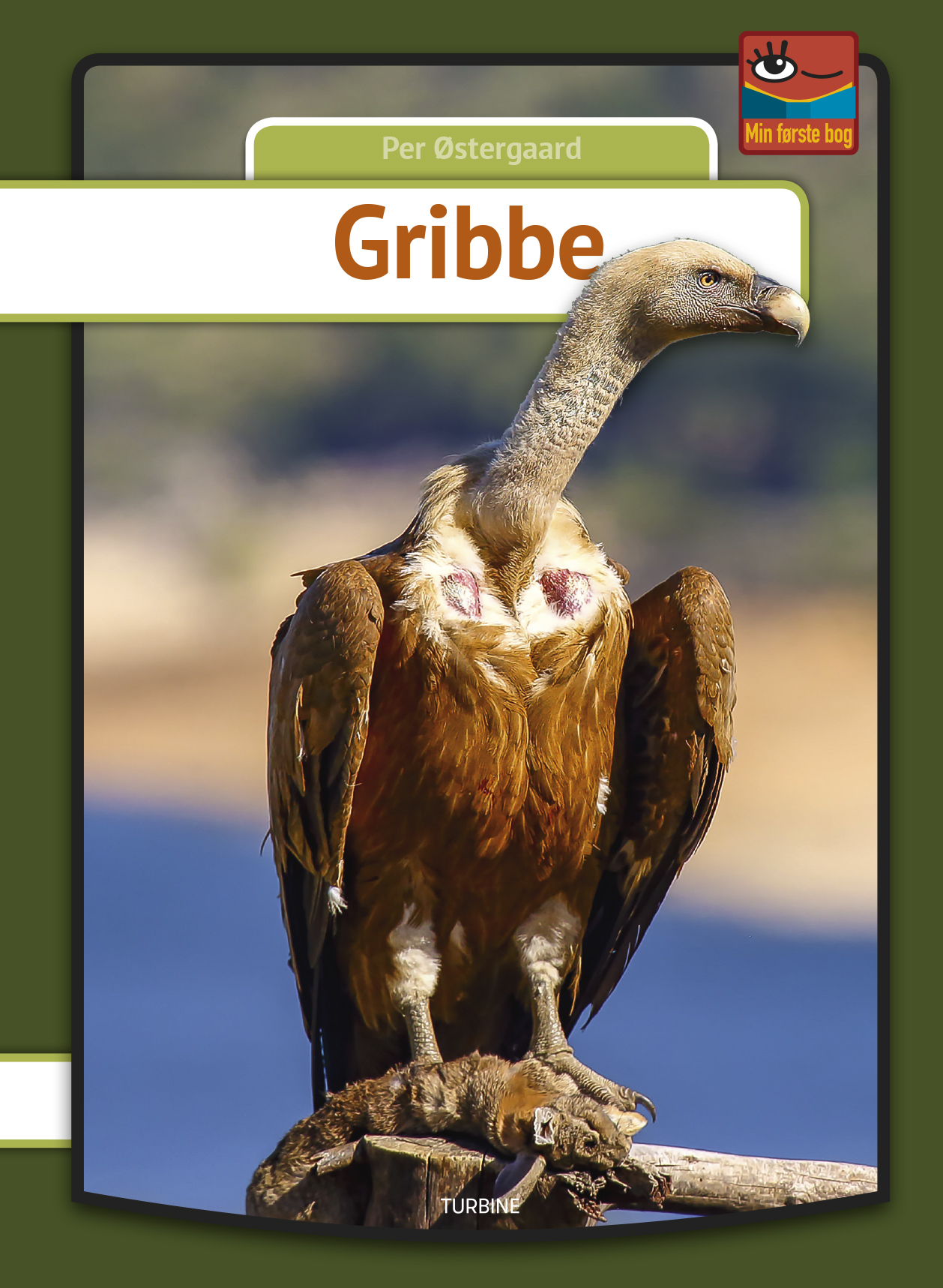 Gribbe