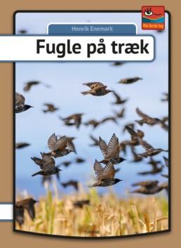 Fugle på træk