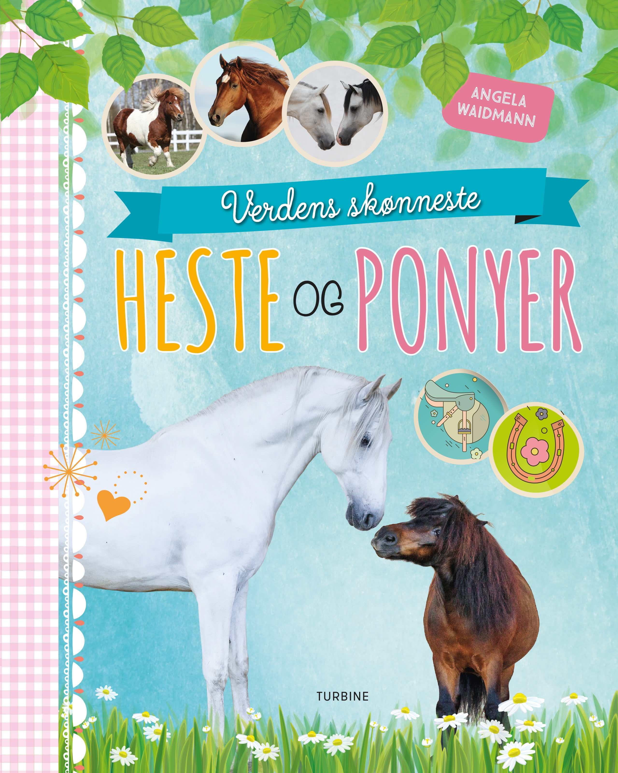 Verdens skønneste heste og ponyer