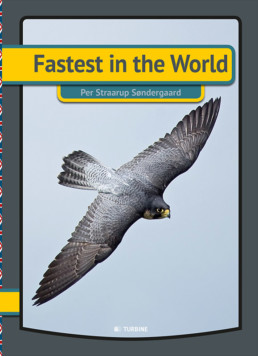 Fastest in the world