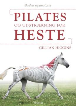 Pilates og udstrækning for heste