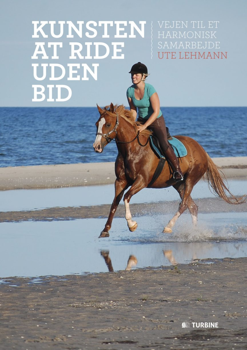 Kunsten at ride uden bid